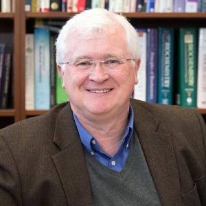 Tadhg Begley Profile Photo