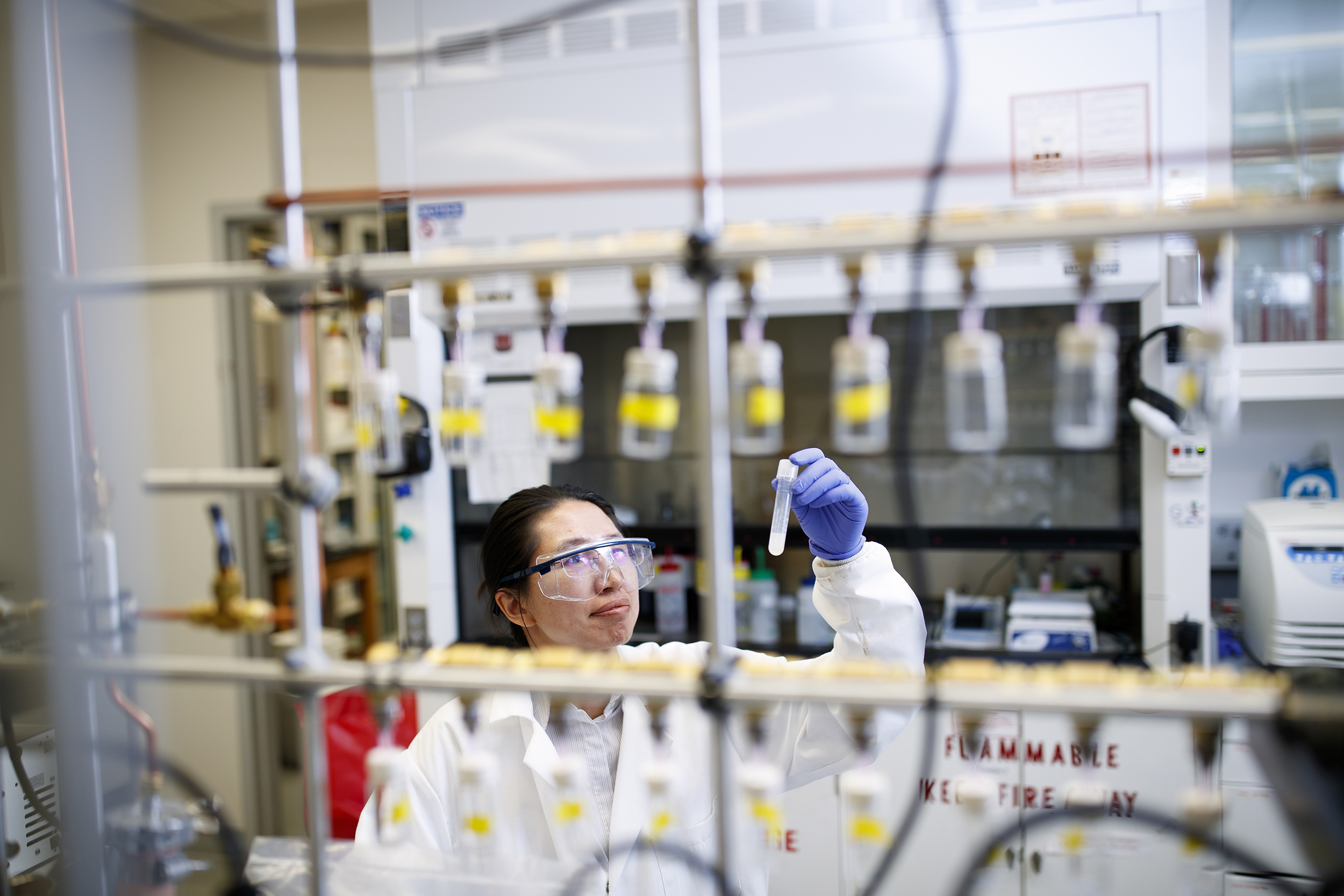 Husker team awarded $1.8M to investigate iron-sulfur redox mechanisms
